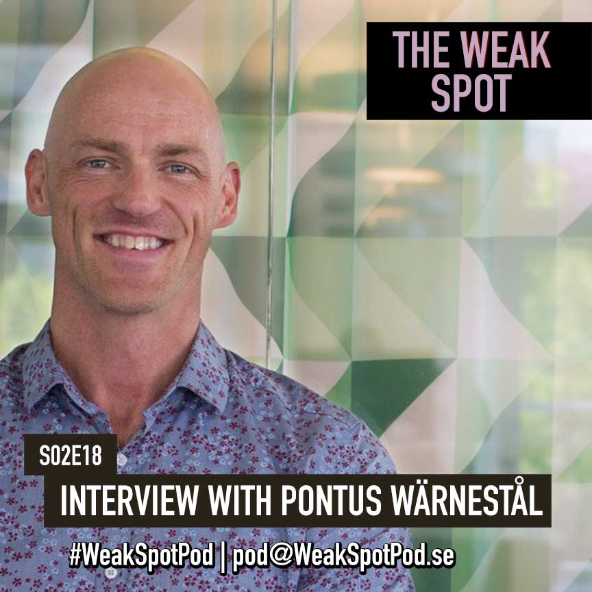 18. BONUS: Interview with Pontus Wärnestål